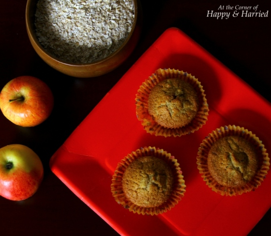 Apple Oat Flour Muffins