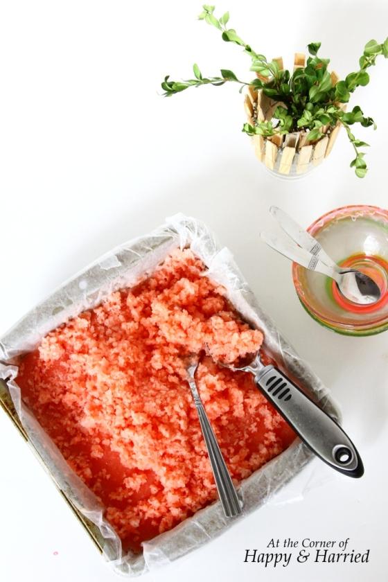 Watermelon Milkshake Granita