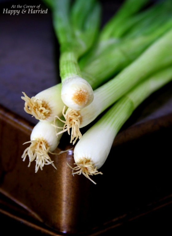 Spring Onions For Tofu in Chili-Garlic Sauce