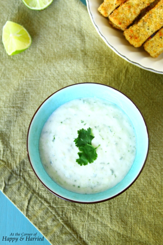 Tzatziki Dip {With Cucumber, Garlic And Cilantro}