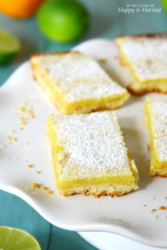 Homemade Citrus Bars With A Delicious Crust