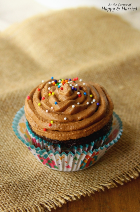Luscious Chocolate Cupcake With Fluffy Chocolate Whipped Cream Frosting