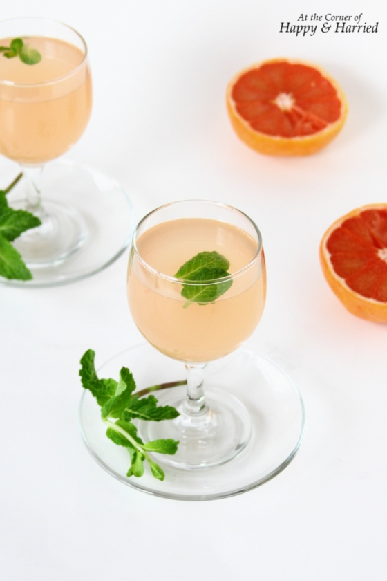 Grapefruit Juice Mocktail