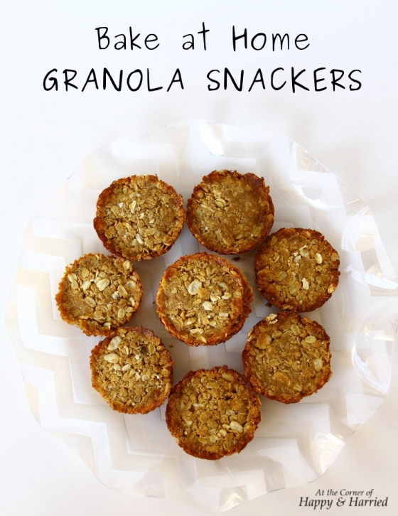 BakingWithBunches Honey Oats Granola Snackers