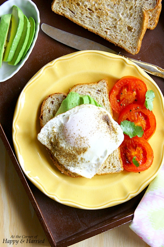 Fried Egg, Avocado & Charred Tomatoes On Bread