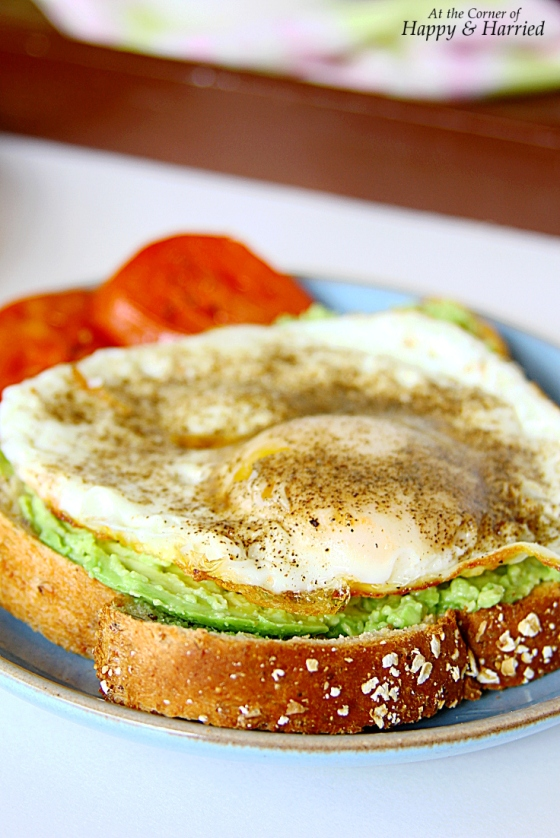 Toast With Avocado Spread & Fried Egg